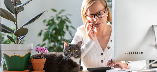 Employees Working from Home: What Tax Deductions Can You Claim?